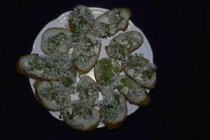 tartines d'ail des ours © Secrets de plantes