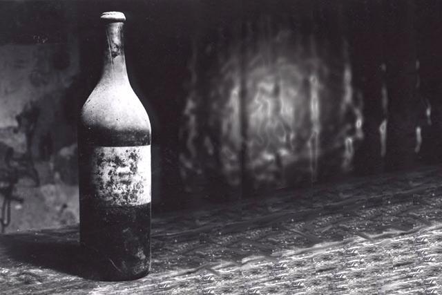 Pour ma famille vin de pissenlit vosges il alcoolise - Recette vin de pissenlit ...