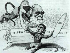 L'origine des espèces de Darwin - caricature