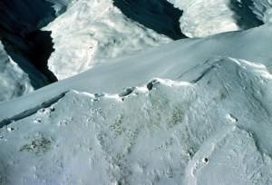 Avalanche de plaque © ANENA