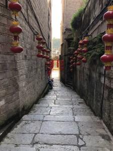 ruelle de Zhenyuan