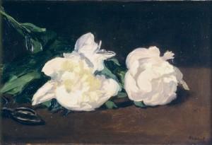 Branche de pivoine blanche et sécateur d'Édouard Manet - Musée d'Orsay