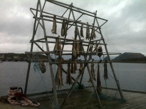 séchoir à morue - Honnigsvag - Norvège