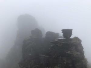 Les sommets de Fan Jing Shan