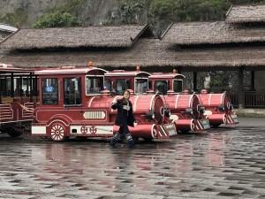 les petits trains de la visite des dix mille cîmes