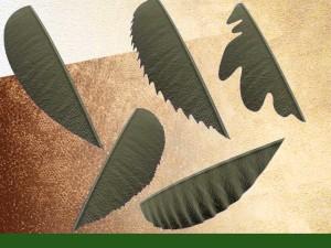 formes des feuilles simples