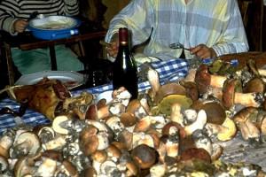 Préparation des champignons